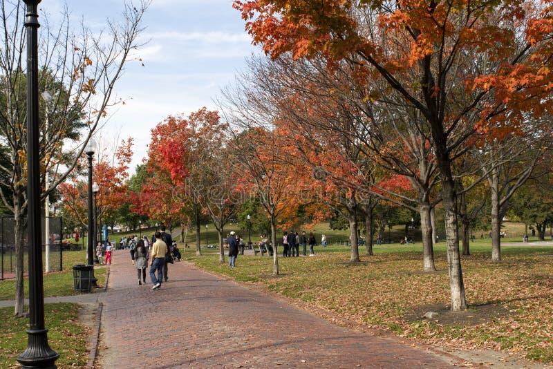 Boston Common Park. Beautiful Boston Common Park Trees in Autumn stock image