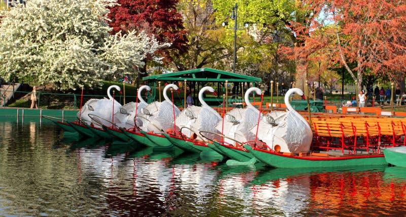 Boston comune e giardino pubblico, S.U.A. immagine stock libera da diritti