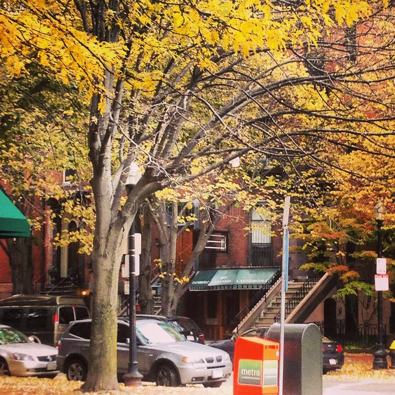 Boston in the fall. Brownstones in the Back Bay section of Boston with leaves changing color royalty free stock photos