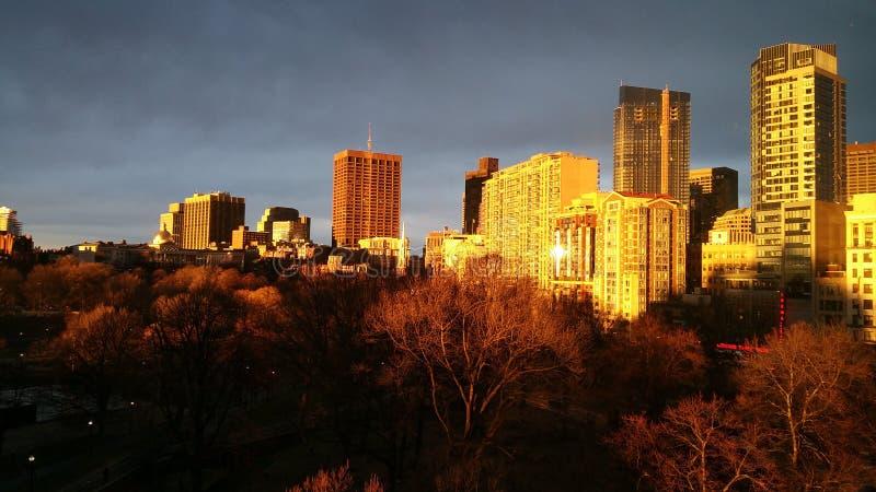 Boston& x27; goldene Stunde s lizenzfreie stockfotos