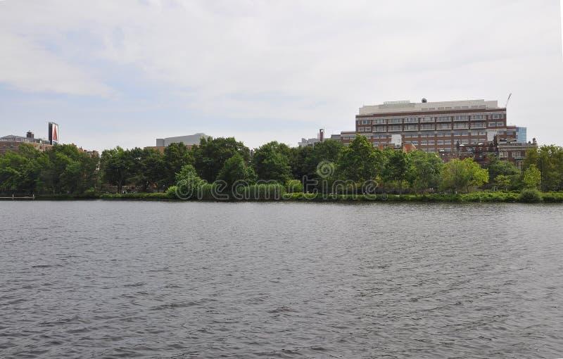 Boston linia horyzontu od Charles rzecznego rejsu w Massachusettes stanie usa zdjęcia royalty free