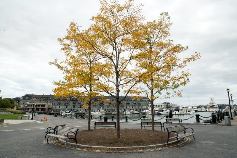 Boston Marina zdjęcia stock