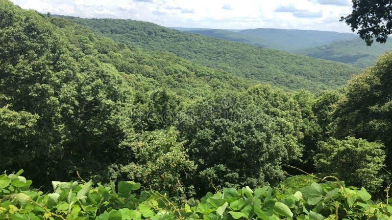 Boston Mountains stock image
