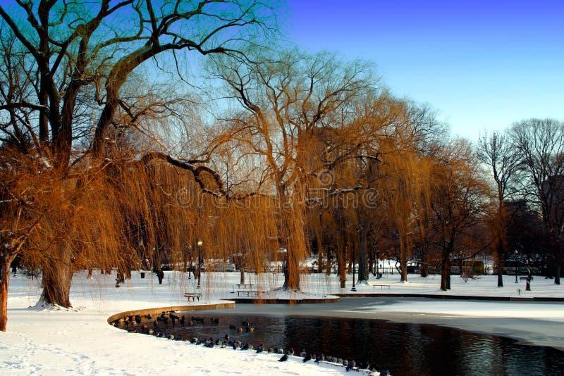 Download Boston Public Garden stock photo. Image of pond, lake - 1289782