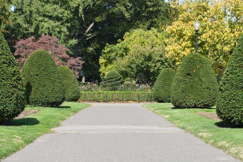 Boston Public Garden. A tree-lined path in Boston Public Garden stock image