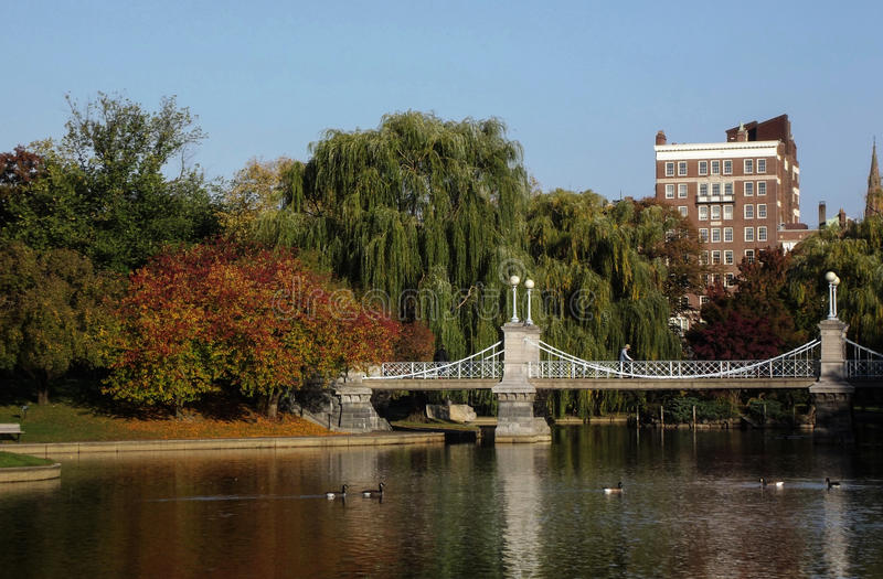 Boston Public Garden. View with Pond and colorful trees stock images