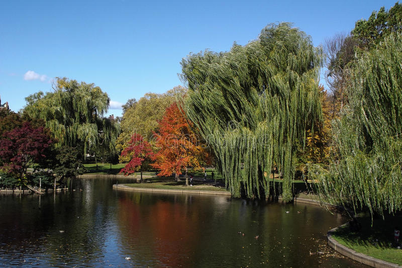 Boston Public Garden. View with Pond and colorful trees stock photo