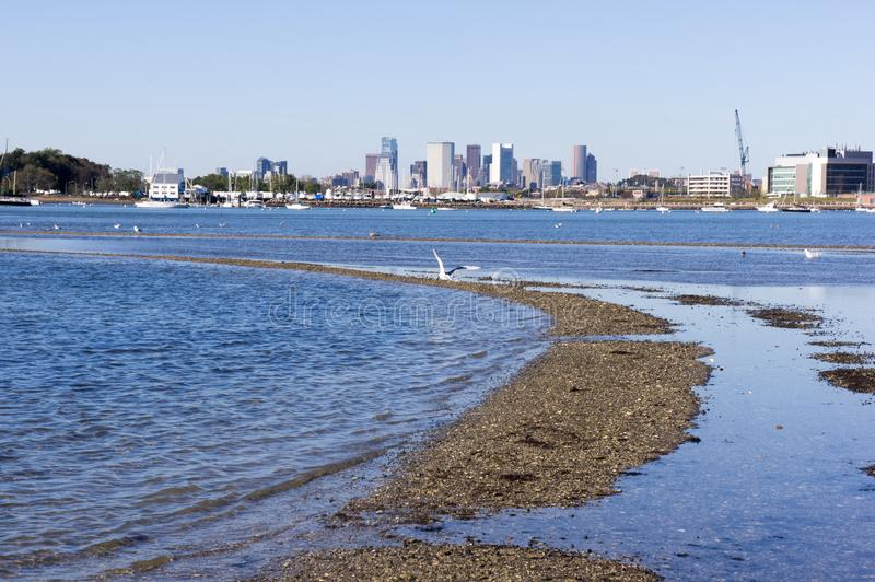 The Boston Skyline as seen from Squantum park royalty free stock photos