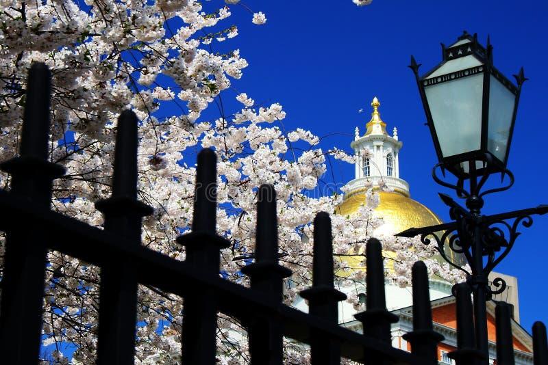 Boston stad i våren - Massachusetts tillståndshus arkivbilder