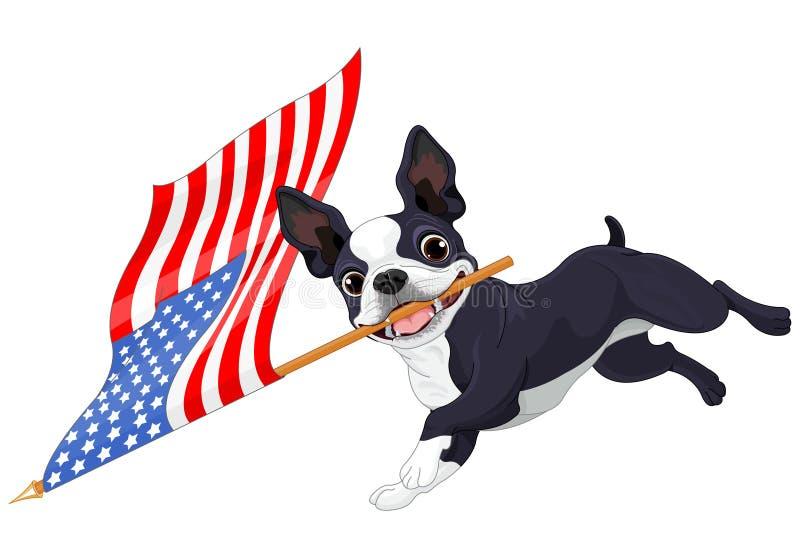Boston Terrier bieg flaga royalty ilustracja