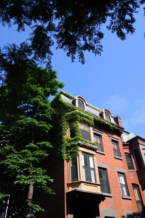 Boston USA arkivbilder
