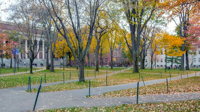 Harward yard in fall season with colorful trees. BOSTON, USA - OCTOBER, 2015: Harward yard in fall season with colorful trees stock images