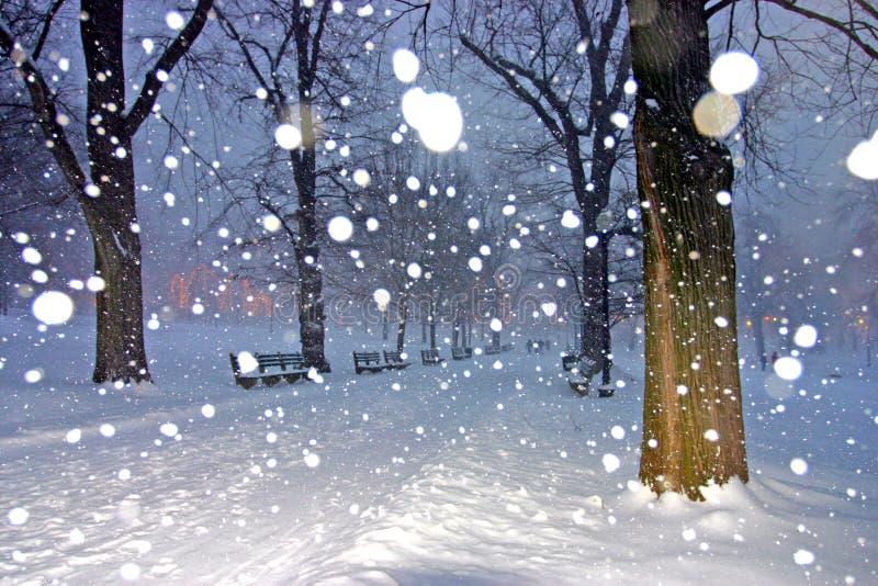 boston vinter royaltyfri fotografi