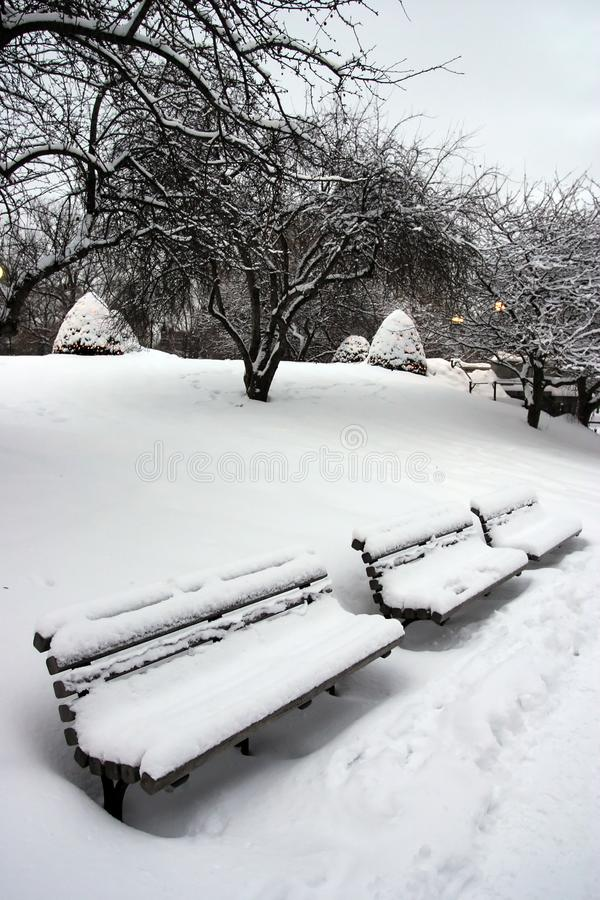 Download Boston Winter stock image. Image of preserved, common - 3993745