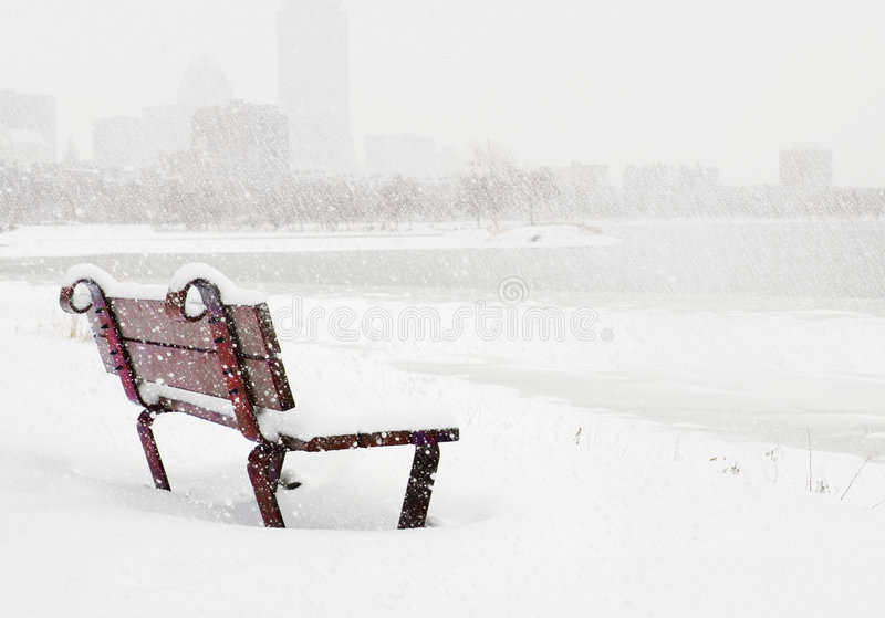 Download Boston winter stock photo. Image of bare, downtown, nature - 7130564