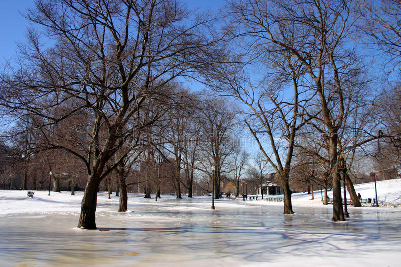 Download Boston Winter stock image. Image of neighborhood, residences - 34084863