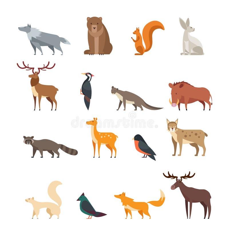 Boswilde dieren en vogels geïsoleerde beeldverhaal vectorreeks Vlakke herten, beer, konijn, eekhoorn, wolf, vos, wasbeer, uil stock illustratie