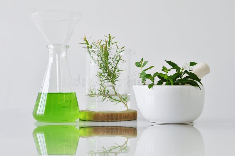 Botánica orgánica natural y cristalería científica, medicina alternativa de la hierba, productos de belleza cosméticos naturales  foto de archivo libre de regalías