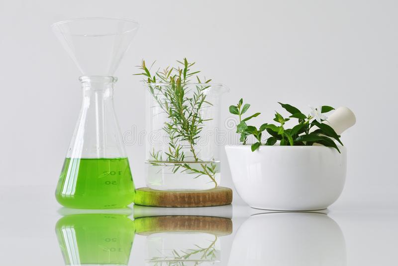 Botânica orgânica natural e produtos vidreiros científicos, medicina alternativa da erva, produtos de beleza cosméticos dos cuida foto de stock royalty free