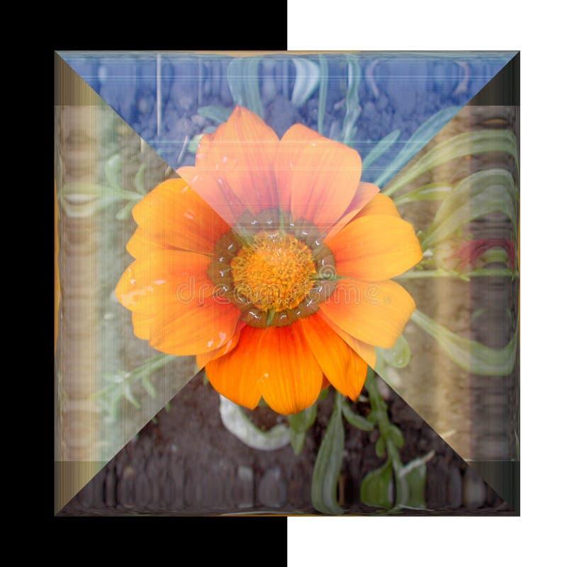 botão 3D quadrado lustroso com flor real fotografia de stock royalty free
