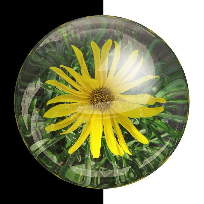 botão 3D redondo lustroso com flor real fotografia de stock royalty free