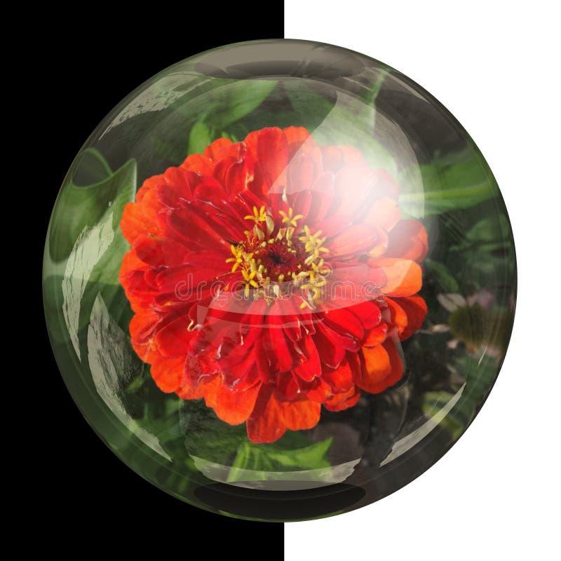 botão 3D redondo lustroso com flor real fotografia de stock