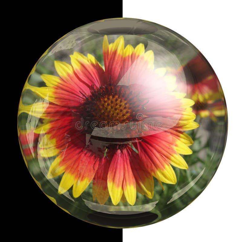 botão 3D redondo lustroso com flor real imagens de stock royalty free