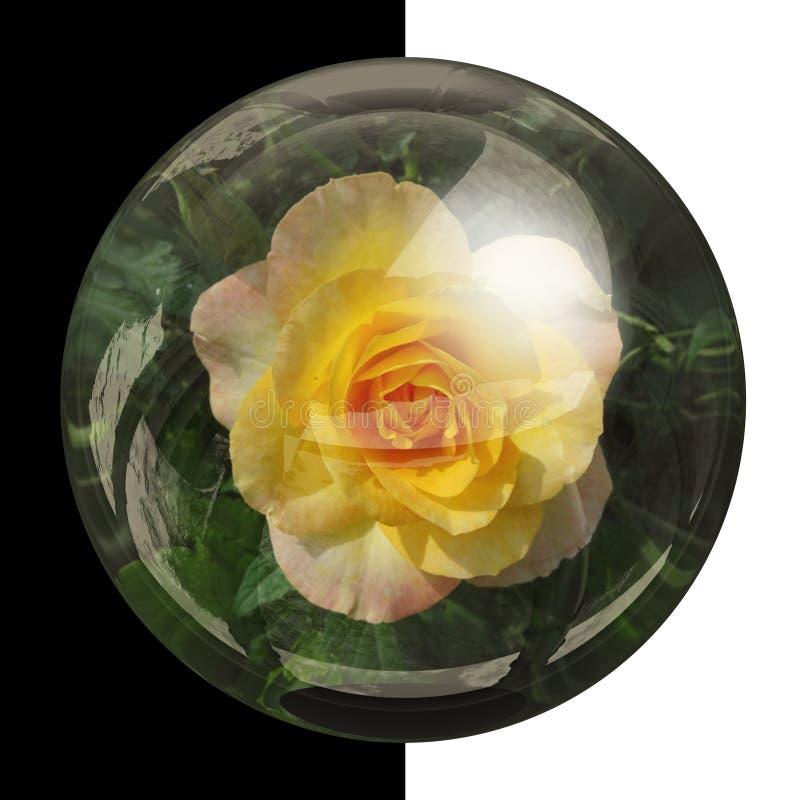 botão 3D redondo lustroso com flor real foto de stock royalty free