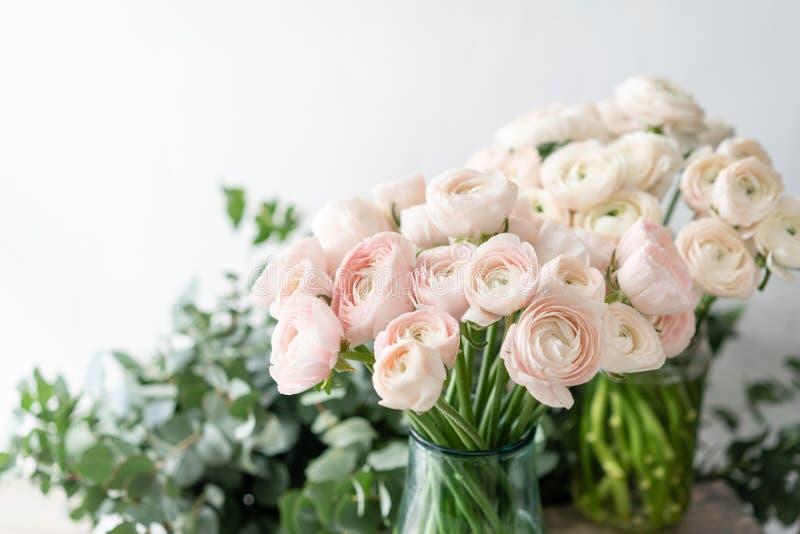Botão de ouro persa nos vasos de vidro Grupo pálido - o ranúnculo cor-de-rosa floresce o fundo claro wallpaper Flores da estação  imagens de stock