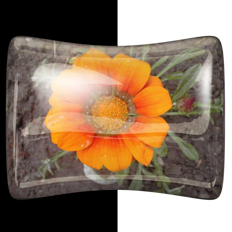botão lustroso do descanso 3D com flor real imagem de stock royalty free