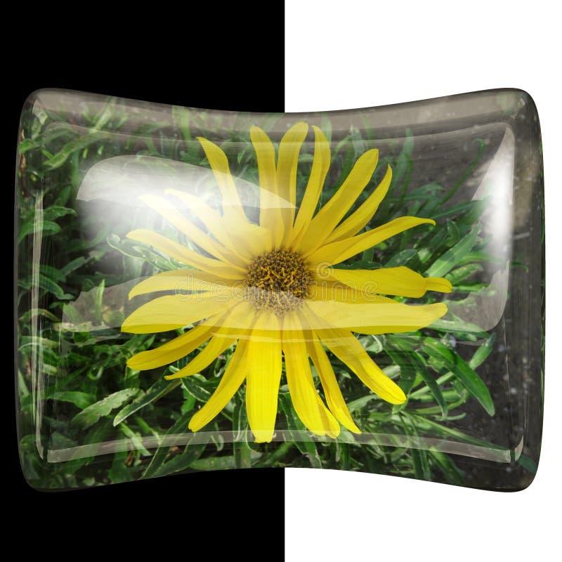 botão lustroso do descanso 3D com flor real imagens de stock