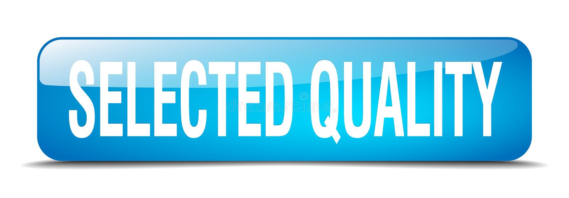 botón seleccionado de la calidad ilustración del vector