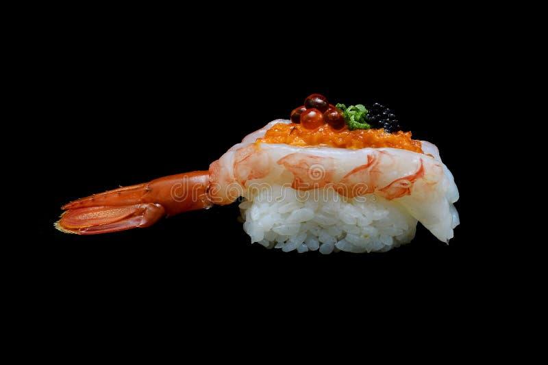 Botan ebisushi eller Spacial högvärdig konungräkasushi som är blandad vid ikura- och kaviaröverkanten på japanska ris Japansk tra arkivfoto
