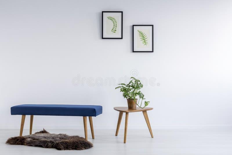 Botanic decoration in room stock photo