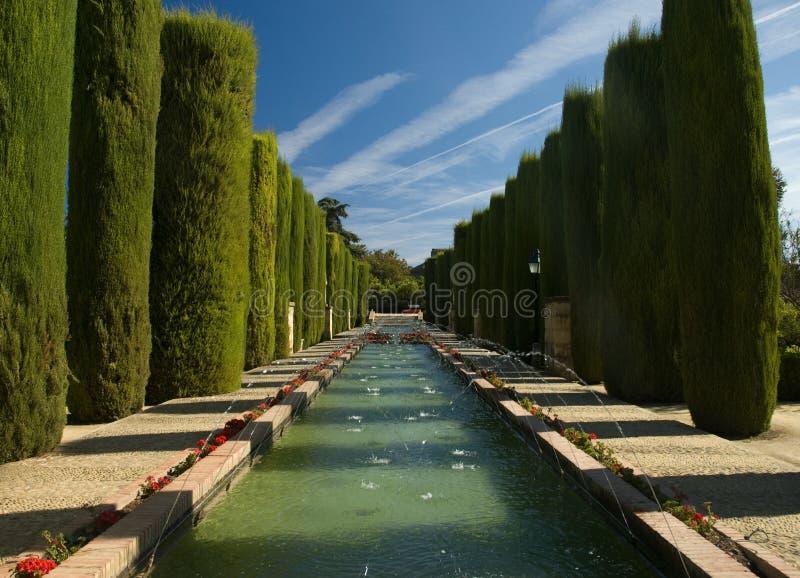 Download Botanic garden in Cordoba stock image. Image of scene - 8203091