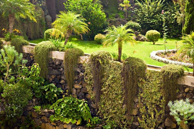 Download Botanic gardens stock image. Image of sprinkle, gardens - 22667687
