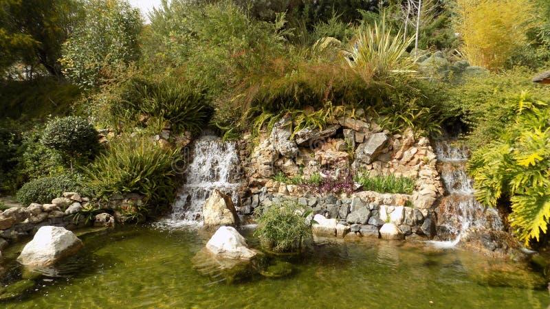 Botanic Torremolinos-Molino del Inca- -Andalusia. Botanic gardens -Molino del Inca-Torremolinos---ANDALUSIA Spain-europe stock image