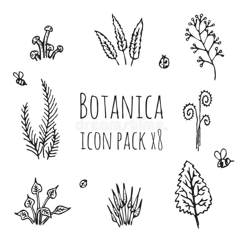 Botanica - stylizowany osiem rzeczy ikony setu monochromatyczny czarny składać się z rośliny, pieczarki i insekty, ilustracja wektor