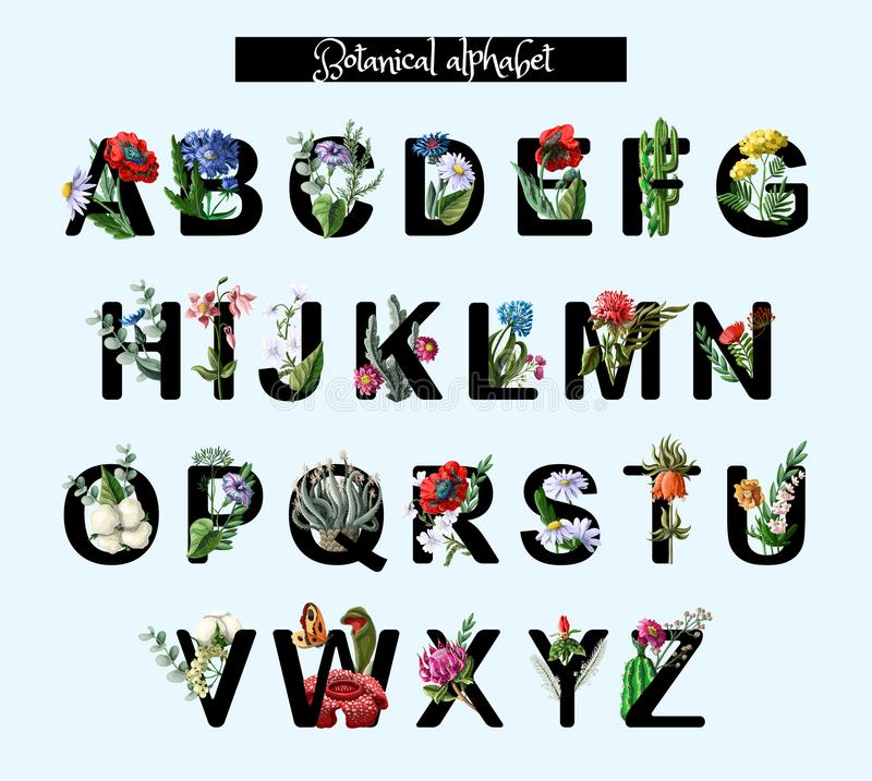 Botanical alphabet with wild and tropical flowers, poppy, chamomile and other. Vector illustration. royalty free illustration