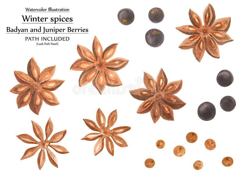 Winter spices watercolor set royalty free illustration