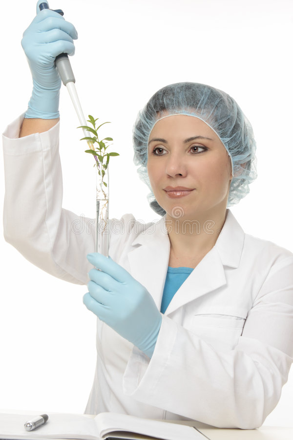 Botanical Experiment. Scientist using a manual pipette in a botanical experiment royalty free stock images