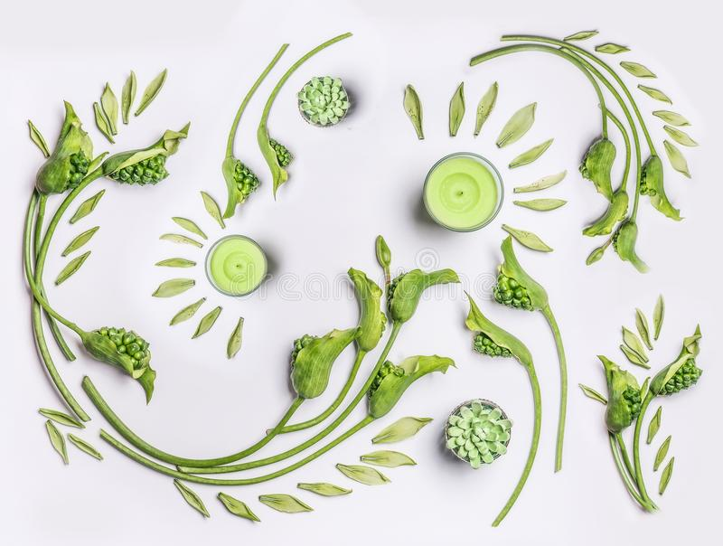 Botanical flat lay with leaves , green flowers and candles on white background, top view. Spa, wellness, beauty stock image