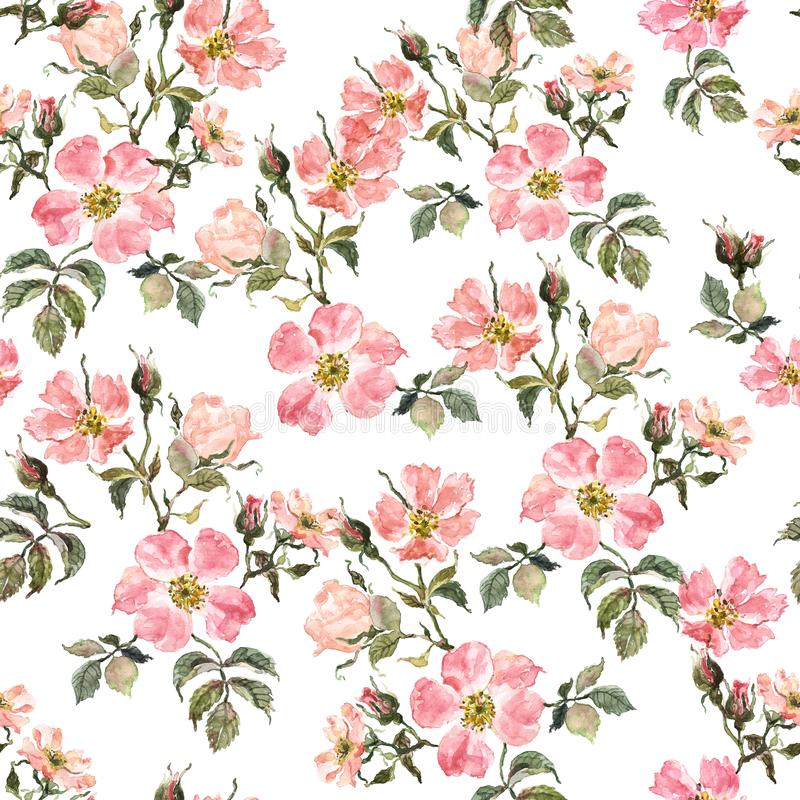 Botanical floral seamless pattern with rosehip and leaves on white background. Watercolor wild roses print stock photo