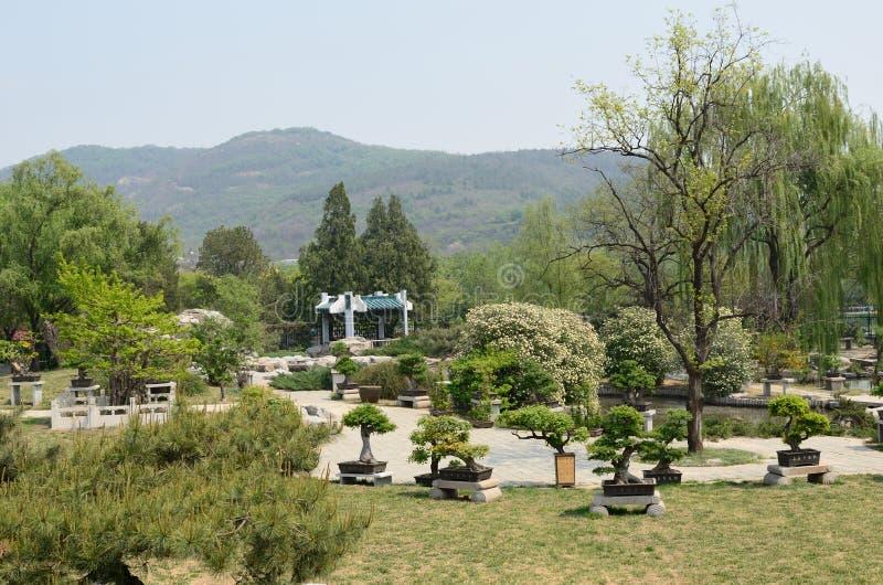 Download Botanical Garden stock photo. Image of botanical, grass - 21311566