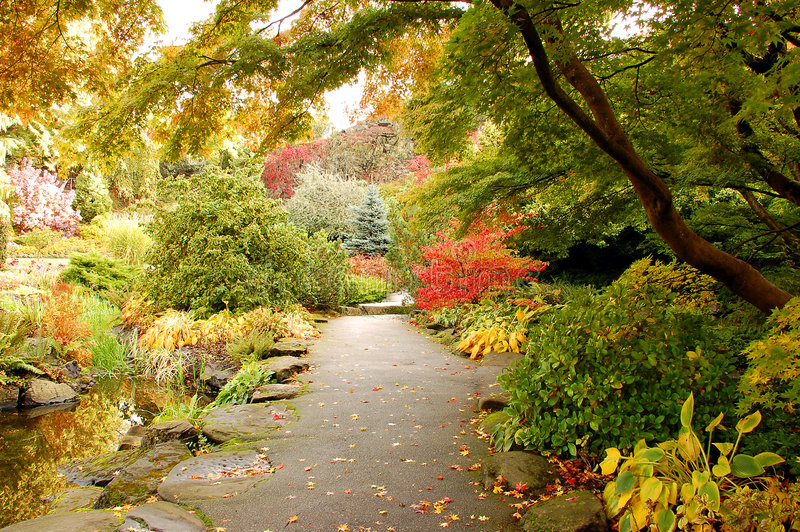 Botanical garden in autumn royalty free stock images