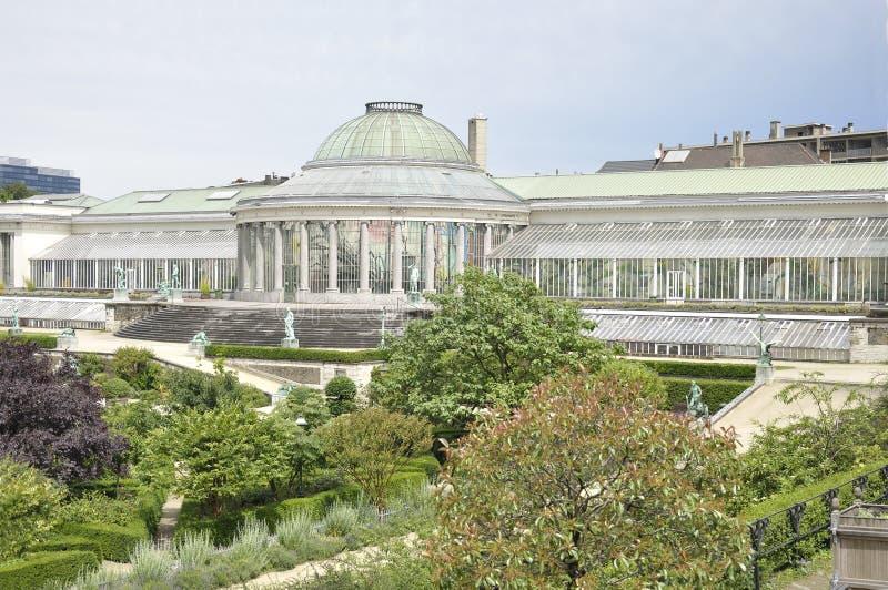 Botanical garden of Brussels stock photo