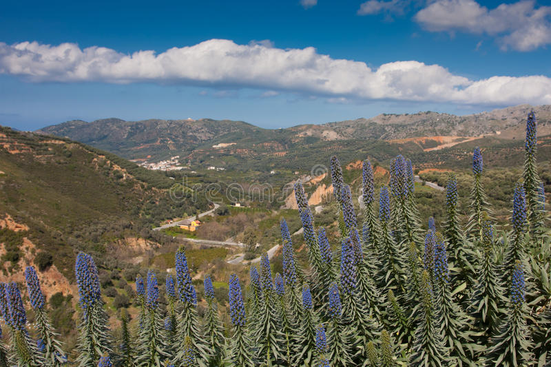 Botanical Garden of Crete stock photo