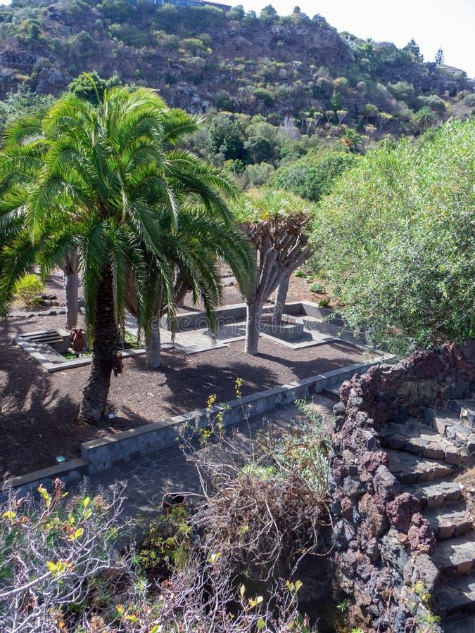 Botanical garden on Gran Canaria. Gran Canaria/Spain - August 9 2019: Jardín Botánico Canario Viera y Clavijo, the full name of the botanical garden on royalty free stock photos