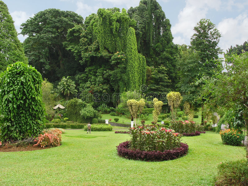 Botanical Garden, Kandy. Sri Lanka stock image