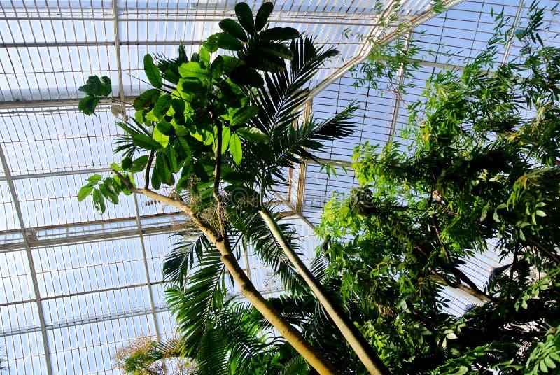 Botanical Garden stock photos